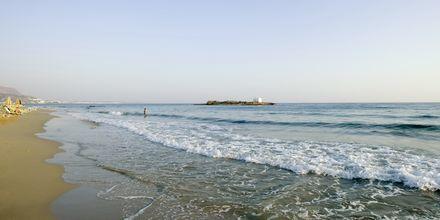 Stranden vid hotell High Beach i Malia på Kreta, Grekland.