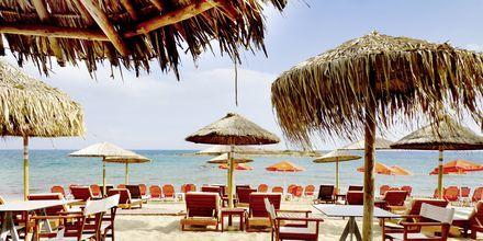 Strandbar på hotell High Beach i Malia på Kreta, Grekland.