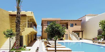 Pool på hotell High Beach i Malia på Kreta, Grekland.