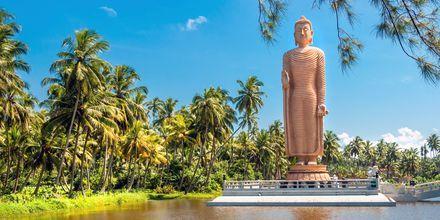 Buddha-staty i Hikkaduwa, Sri Lanka.