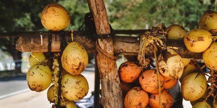 King Coconut som växer på Sri Lanka - delas på hälften och dricks med sugrör!