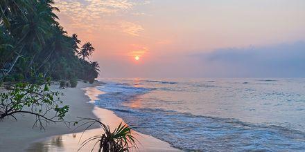 Solnedgång på Hikkaduwa Beach i Sri Lanka.