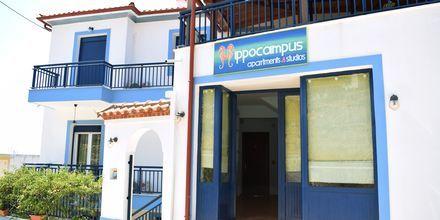 Hotell Hippocampus på Alonissos, Grekland.