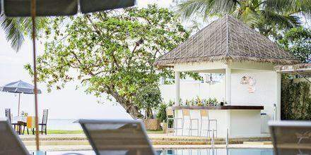 Poolbar på Hive Khaolak Beach Resort, Thailand.