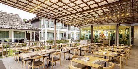 Café på Hive Khaolak Beach Resort, Thailand.