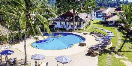 Pool på hotell Hive Khaolak Beach Resort, Thailand.
