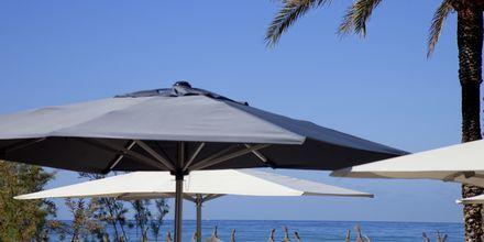 Stranden vid HM Tropical, Mallorca.