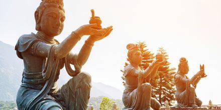 Statyer som tillber Tian Tan Buddha.