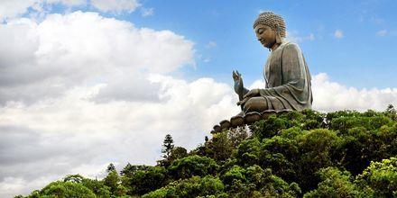 Tian Tan Buddha är en av världens största buddhas och ligger på Lantau Island.
