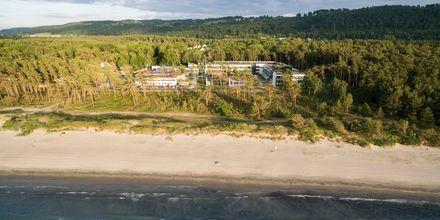 Njut av en semester i Sverige, precis vid strandkanten.