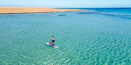 Testa på SUP under semestern i Hurghada.