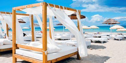 Ibiza är känt för sina vackra stränder, bra nattliv och sköna vatten.