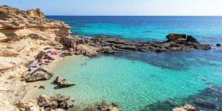 Ta en utflykt till närliggande ön Formentera, där turkosblått vatten och vita stränder väntar.