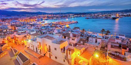 Ibizas hamn i solnedgång.