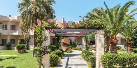 hotell Ideal Beach på Kreta, Grekland.