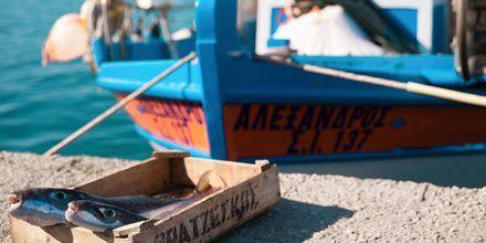 Greklandskänsla i Ierapetra & Koutsounaris på Kreta.