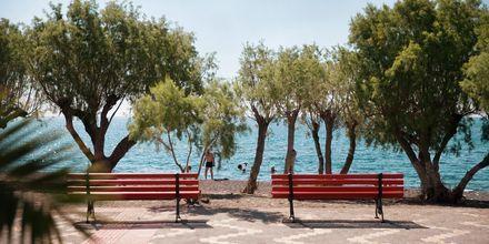 Havsutsikt i Ierapetra & Koutsounaris på Kreta.