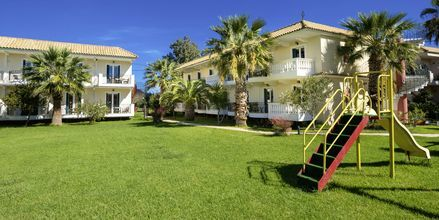 Trädgård på hotell Ilios i Laganas, Zakynthos.