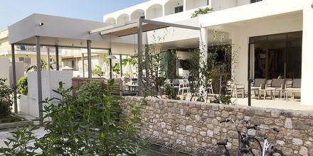 Hotell Imperial i Kos stad, Grekland.