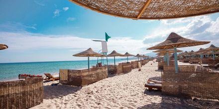 Stranden vid hotell Imperial Shams Abu Soma i Abu Soma, Egypten.