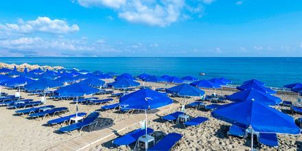 Strand vid hotell Indigo Mare, Platanias på Kreta.