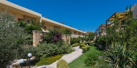 Hotell Indigo Mare, Platanias på Kreta.
