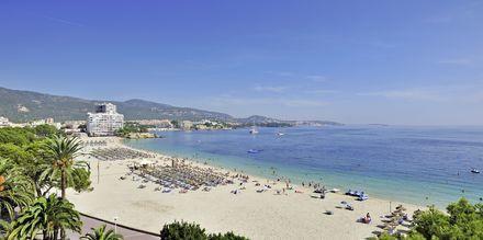 Vy över stranden från INNSiDE by Melia Cala Blanca.