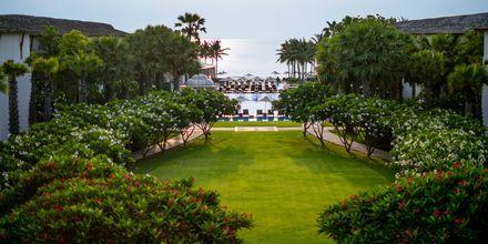 Intercontinental Hua Hin Resort