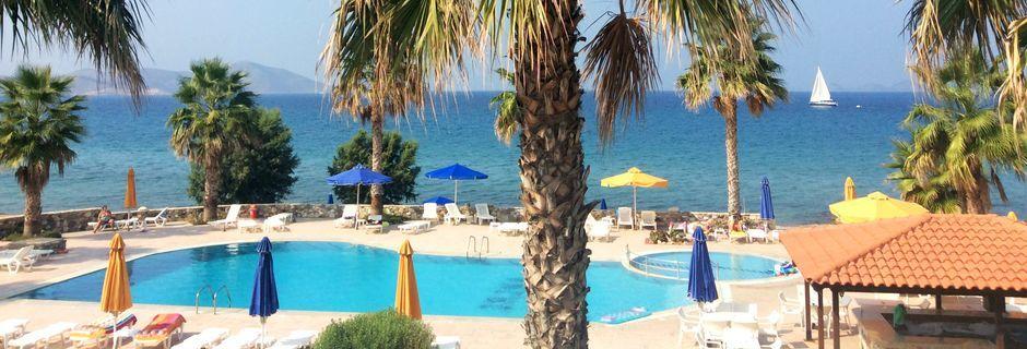 Poolområdet på hotell Irina Beach i Tigaki på Kos, Grekland.