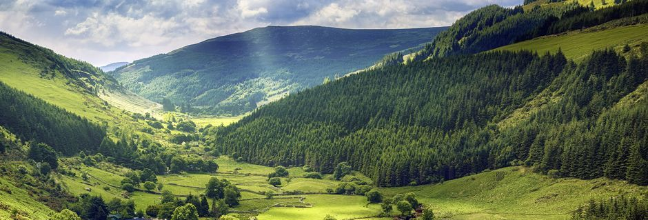 Irland - den gröna ön!