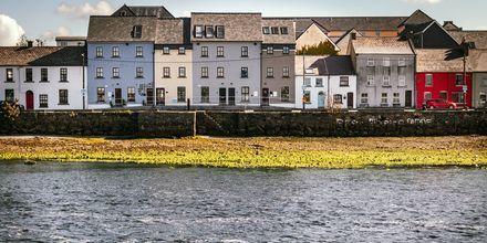 Galway på Irland, en bohemisk och omtyckt stad!