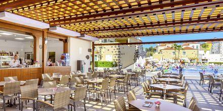 Poolbar på hotell Isabel i Playa de las Americas på Teneriffa.