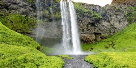 Vattenfallet Seljandsfoss på Island