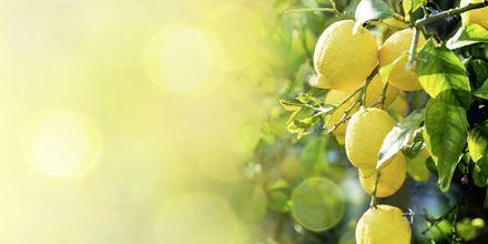 Njut av färsk frukt och grönsaker i Italien.
