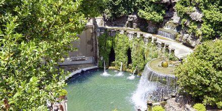 Vackra trädgårdar är ett signum för Italien.