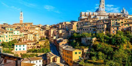 Sienna, Italien.