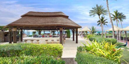 Captain's bar och restaurang på Hotell JA Beach i Dubai.