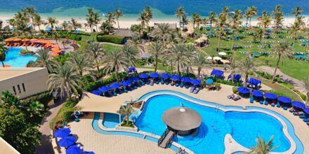 Poolområde vid stranden på hotell JA Beach i Dubai.