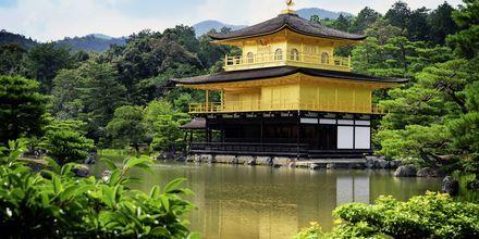 The Golden Pavilion är ett känt buddhist-tempel i Kyoto.