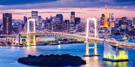 Japan är ett fantastiskt spännande land, med Tokyo som huvudstad.