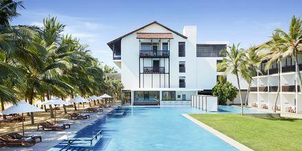 Pool på Jetwing Blue i Negombo, Sri Lanka