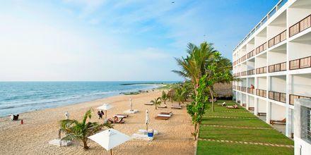 Stranden vid hotell Jetwing Sea i Negombo på Sri Lanka.