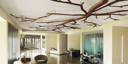 Hotell Jetwing Yala i Yala på Sri Lanka.