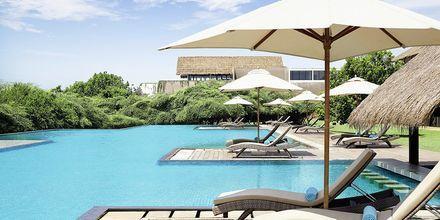 Poolen på hotell Jetwing Yala i Yala på Sri Lanka.