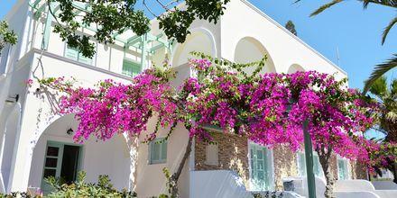 Hotell Joanna på Santorini, Grekland.