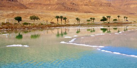 I Döda havet kan inga växter eller djur överleva på grund av den höga salthalten.