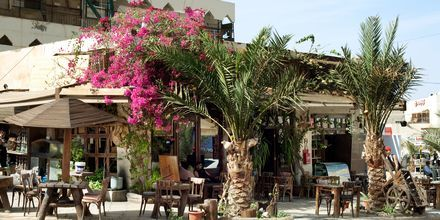 Aqaba i Jordanien.