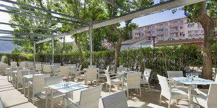 Restaurang på hotell JS Sol de Alcudia, Mallorca.