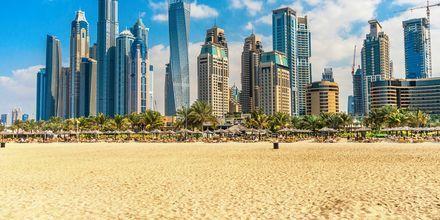 Allmänna stranden i Dubai Jumeirah Beach.