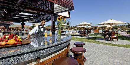 Bar på hotell Jungle Aqua Park i Hurghada, Egypten.